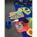 Planting seeds for writing instructions
