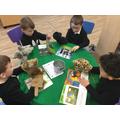 We looked at jungle environments.