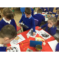 We created collages .We looked at photographs to check what colours to use.