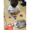Measuring the size of the pigs with cubes