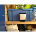 What will happen if it is in a dark cupboard?