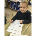 We wrote sentences about what animals can do.