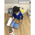 We have been sharing stories about night time.