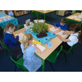 We have made observational drawings of the plants in our classroom
