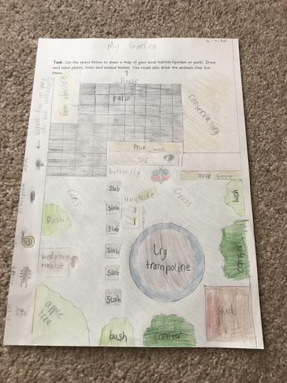Daniel's Beautiful Work About Habitats