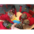 Literacy - Guided reading