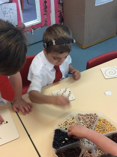 Transient Art - making bean and seed patterns.