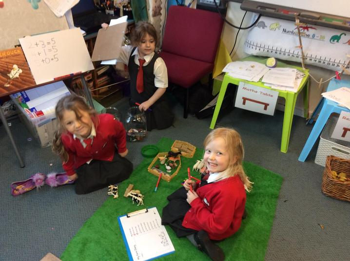 Setting up our own small farm - super team work