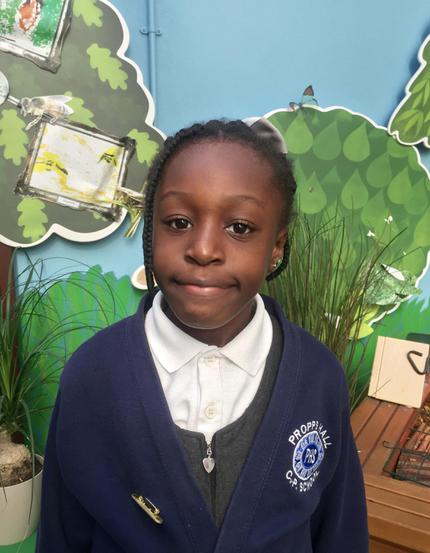 YEAR 2 ECO COUNCILLOR