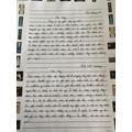 Mollie's diary writing 1