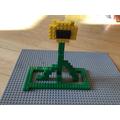 Arthur's sunflower