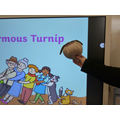 We had our own turnip in class!