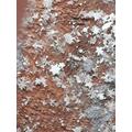 Bea's snowflakes