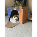 Hugo's new castle by Toby