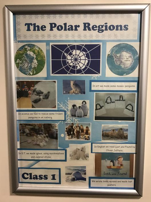 Year 1 - Polar Regions (12:00)