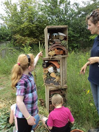 Year 3 building our insect hotel