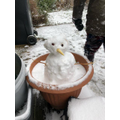 Carter's snowman