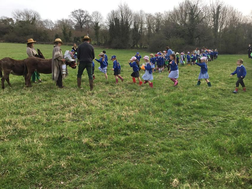Hedgehogs retell the Palm Sunday story complete with real donkeys!