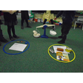 We have been learning about weight.