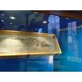 Mary Anning's ichthyosaur.