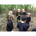 Exploring, stick collecting and bug hunt