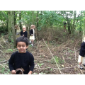 Exploring, stick collecting and bug hunting!