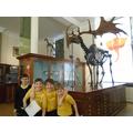 Ashton identified a Megalosaurus!