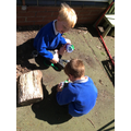 Having a close look using our magnifying bug pots