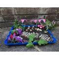 Oral (Robins) model garden.