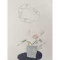 Bei Bei's homelearning - drawing and labelling a plant.  Also Life cycle of a plant.jpg
