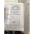Sophie's Flip-book challenge