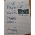 Finley's roman report