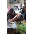 Tamara Weaving