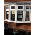 Emily's Window Challenge :D