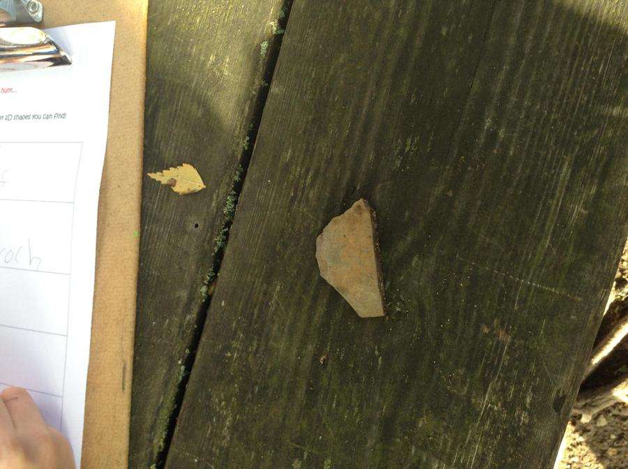Austin found a pentagon shapes stone.
