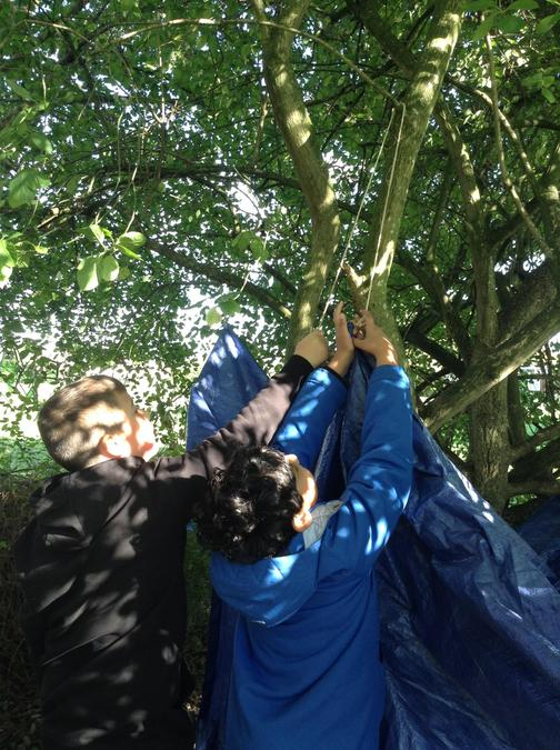 Teamwork, practising knots to build a den.