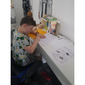 Lucas working hard at his new desk!
