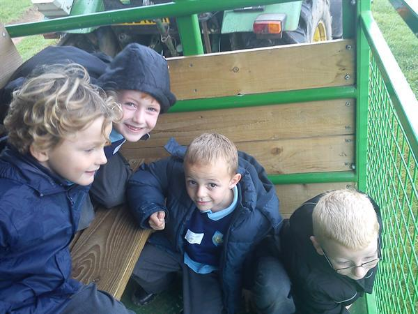 The Tractor boys
