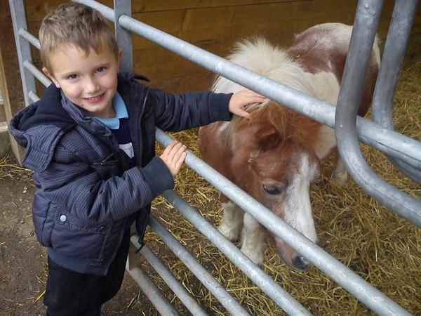 Fun at Buckleberry Farm
