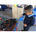 This week we have been busy planting seeds.