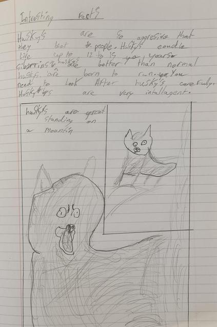 Husky - part 2