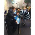 Measuring jungle animals