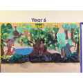 Our Year 5 & 6 Display