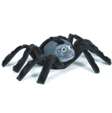 Wowzer the Spiritual Spider
