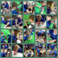 Year 1 Dinosaur Planet Launch Day