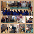 Owls To Behold visit Year 1