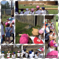 Reception visit Hamerton Zoo