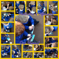 Year 1 'Street Detectives' Topic Work