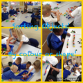 Sorting on our Maths Lesson!