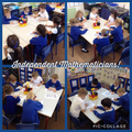 Independent Maths Learning in Owls
